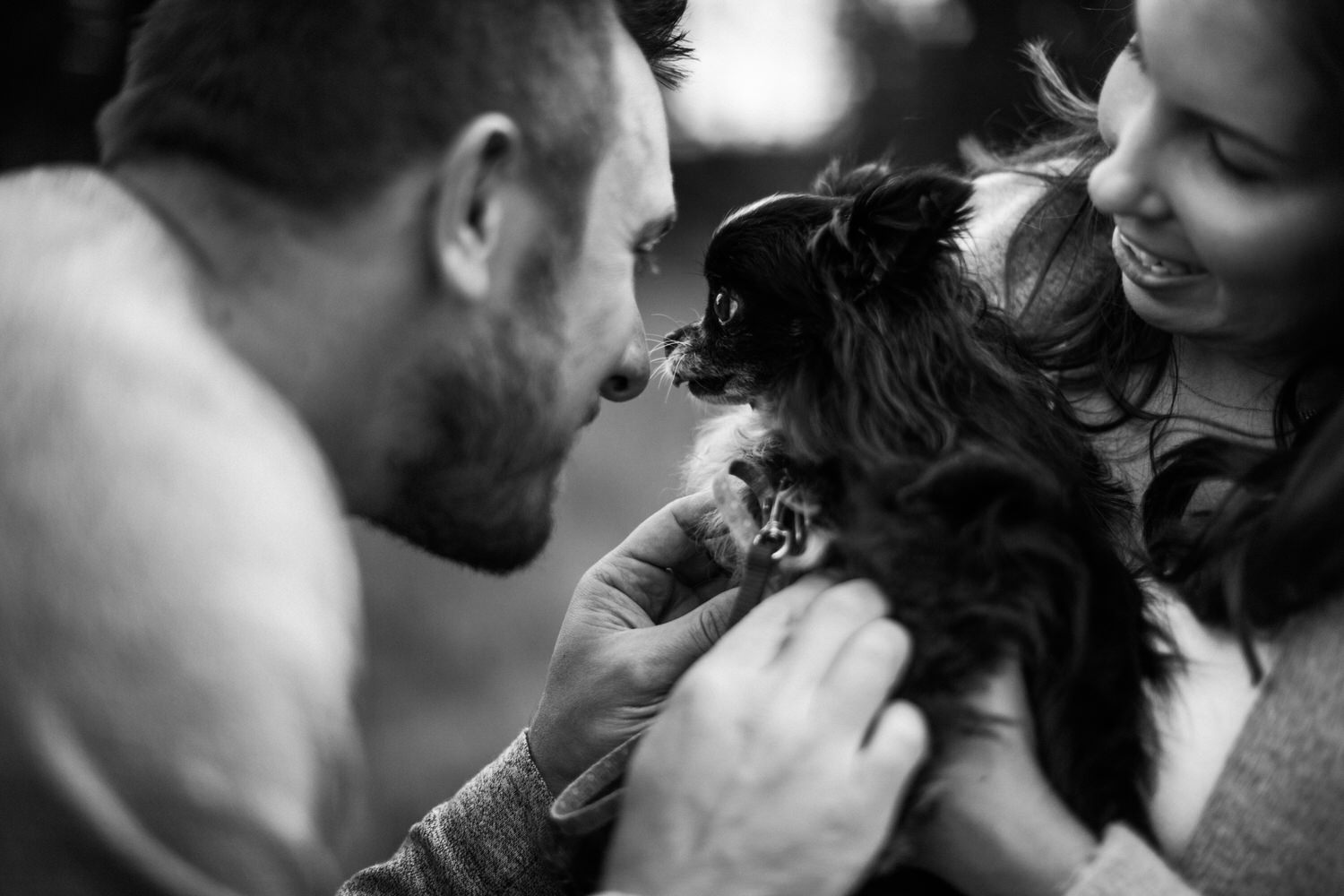 a little furbaby is being loved by the dogs parents in a park in Calgary by the best Alberta Photographer